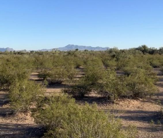 17411 W White Eagle Road, Marana, AZ 85653 (#21830010) :: Long Realty Company
