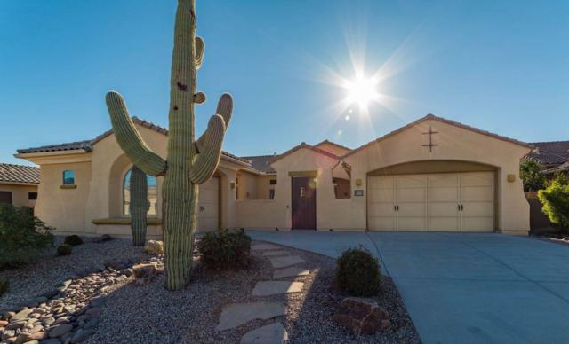 13679 N Tessali Way, Oro Valley, AZ 85755 (#21830358) :: RJ Homes Team