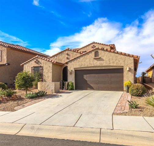 12503 N Summer Wind Drive, Marana, AZ 85658 (#21831732) :: Long Realty Company