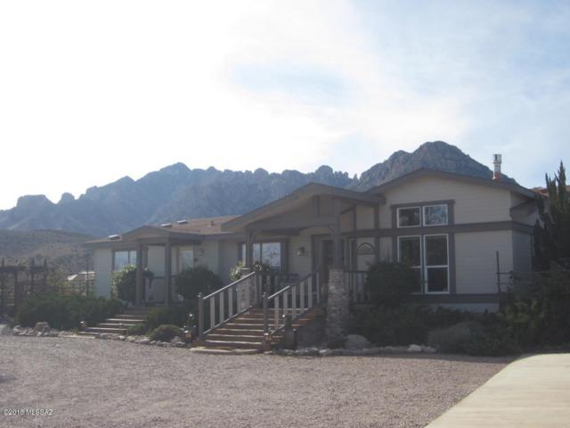 2345 S Rocky Road, Portal, AZ 85632 (#21831944) :: Long Realty - The Vallee Gold Team