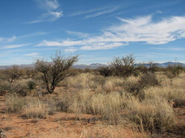40.69 Acre Ortiz Road, Douglas, AZ 85607 (#21832048) :: Long Realty - The Vallee Gold Team