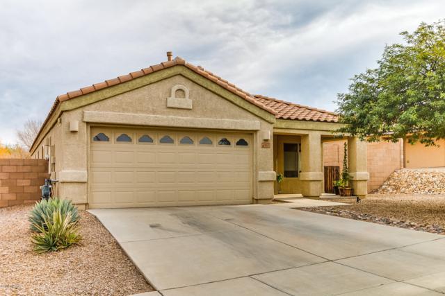 477 S Douglas Wash Road, Vail, AZ 85641 (#21832212) :: Gateway Partners at Realty Executives Tucson Elite