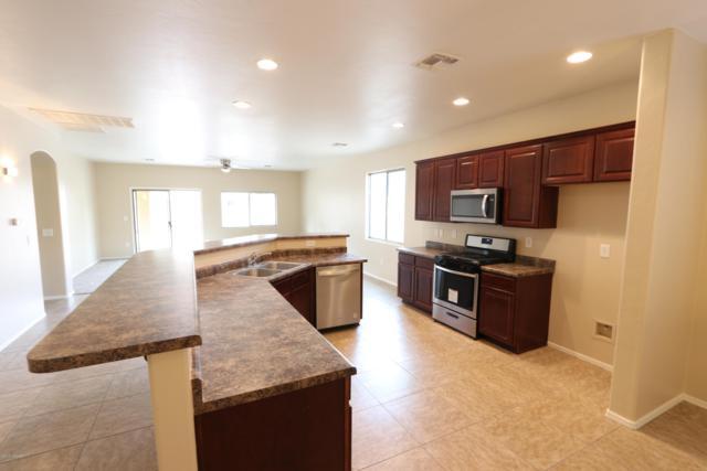 12719 N Belarus Drive, Marana, AZ 85653 (#21832335) :: Gateway Partners at Realty Executives Tucson Elite