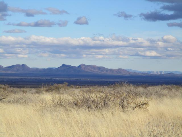 Big Sky Ranches, Mc Neal, AZ 85617 (#21833124) :: The Josh Berkley Team