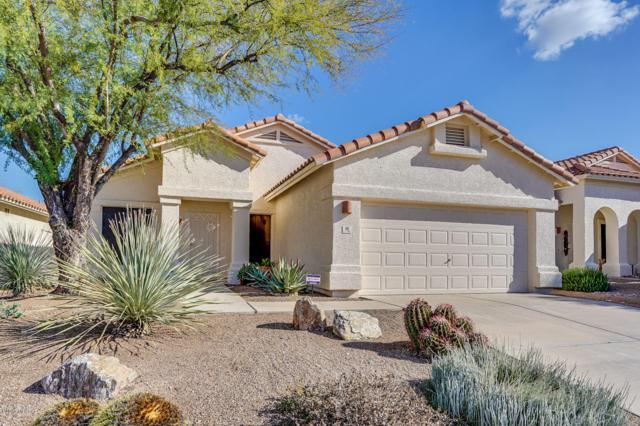 69 S Shrader Lane, Tucson, AZ 85748 (#21901155) :: The Josh Berkley Team