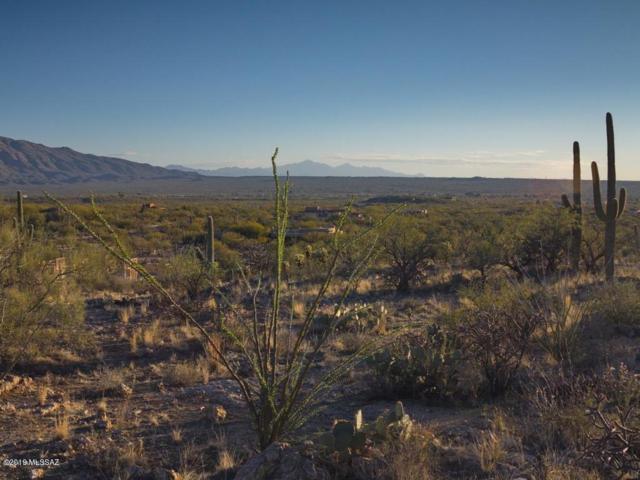 13020 E Placita Cantil #26, Tucson, AZ 85749 (#21902402) :: The Josh Berkley Team
