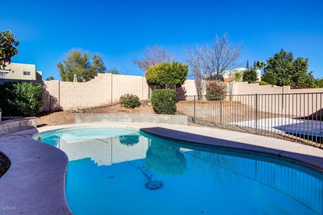 11693 N Mineral Park Way, Oro Valley, AZ 85737 (#21902555) :: Gateway Partners at Realty Executives Tucson Elite