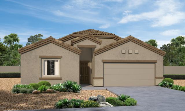 9372 W Gambel Oak Lane, Marana, AZ 85653 (#21902890) :: Long Realty Company