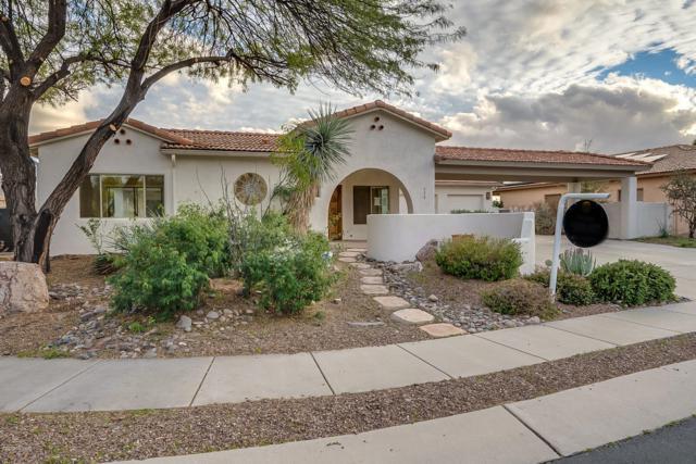 501 W Klinger Canyon Drive, Oro Valley, AZ 85755 (#21903452) :: Long Realty Company