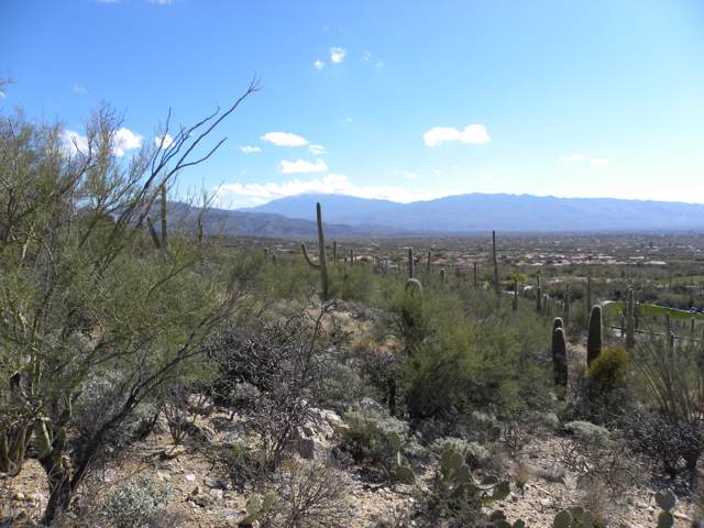 9801 E Sabino Estates Drive #17, Tucson, AZ 85749 (#21903763) :: Long Realty - The Vallee Gold Team