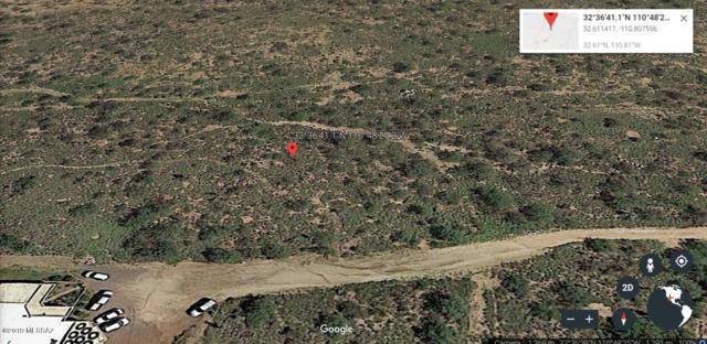 000 Yucca, Oracle, AZ 85623 (#21904071) :: Long Realty Company