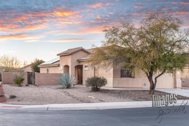 12217 N Gadwall Drive, Marana, AZ 85653 (#21904627) :: The Josh Berkley Team