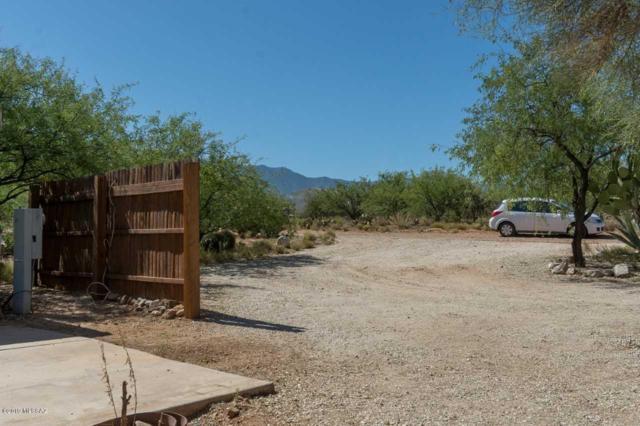4335 E Empty Wash Lane, Catalina, AZ 85739 (#21905662) :: Long Realty Company