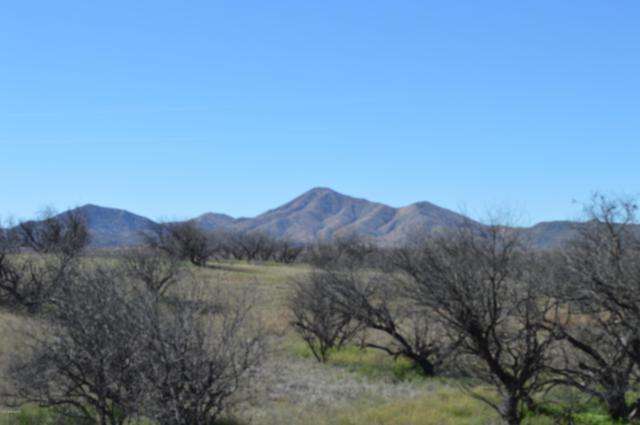 16101 W Crooked Sky Road Na, Arivaca, AZ 85601 (#21906531) :: The Josh Berkley Team