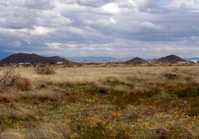 2 Lots (1.65 Acre) On Newland Street #6, Pearce, AZ 85625 (#21906831) :: The KMS Team