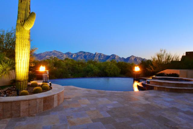 14158 N Blazing Canyon Place, Oro Valley, AZ 85755 (#21908820) :: Long Realty - The Vallee Gold Team