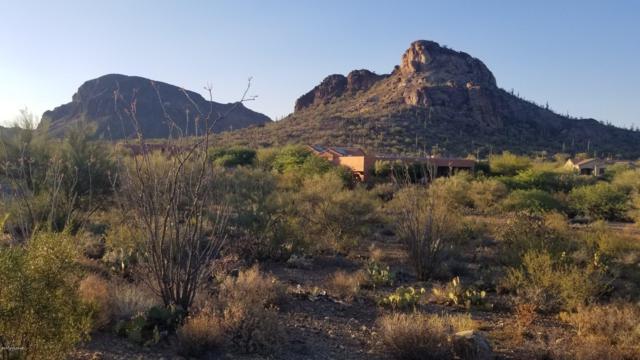 4795 S Bent Saguaro Lane #15, Tucson, AZ 85746 (#21910044) :: Long Realty - The Vallee Gold Team