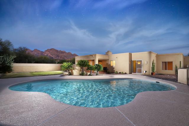 1310 W Saddlehorn Drive, Tucson, AZ 85704 (#21910216) :: Long Realty Company