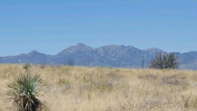 TBD Mustang Trail #20, Sonoita, AZ 85637 (#21912280) :: Long Realty Company