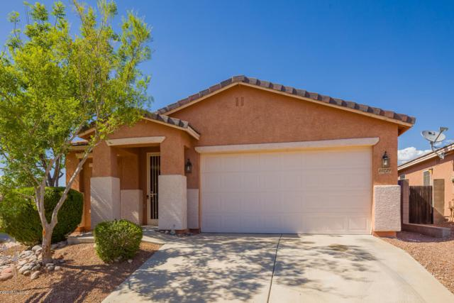 10229 E Wasp Spring Drive, Tucson, AZ 85748 (#21912955) :: The Josh Berkley Team