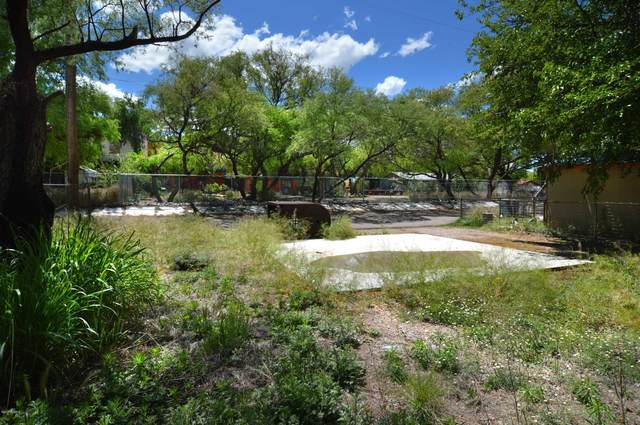 273 Mckeown Avenue Lot 10, Patagonia, AZ 85624 (#21912985) :: The Local Real Estate Group | Realty Executives