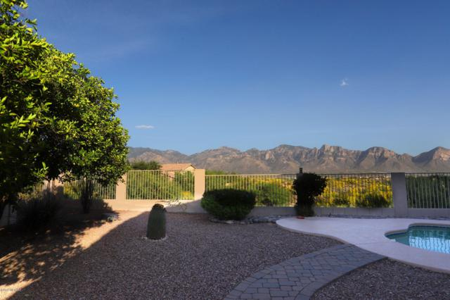 13676 N Balancing Rock Drive, Oro Valley, AZ 85755 (#21913459) :: The Josh Berkley Team