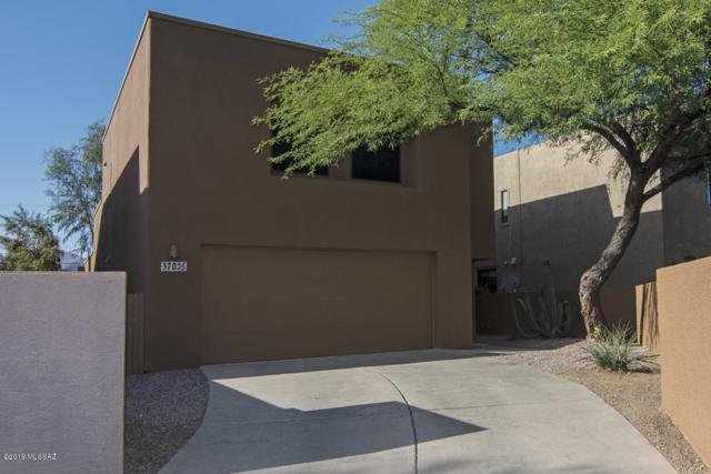 3700 N Royal Prince Court, Tucson, AZ 85719 (#21914085) :: Long Realty Company