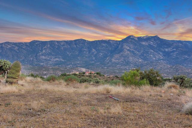 0000D E Horseshoe Bend Road, Tucson, AZ 85739 (#21914366) :: Long Realty Company