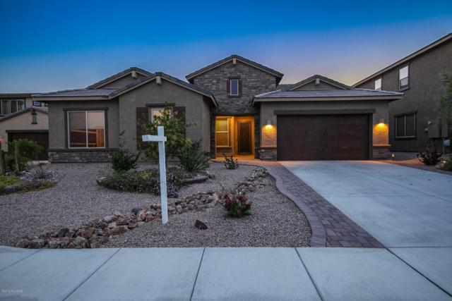 10967 N Delphinus Street, Oro Valley, AZ 85742 (#21914595) :: Long Realty - The Vallee Gold Team