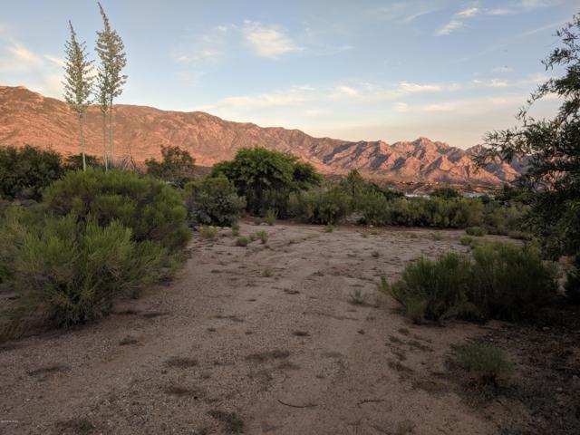 4360 E Coronado Ridge Lane, Tucson, AZ 85739 (#21915552) :: Long Realty Company