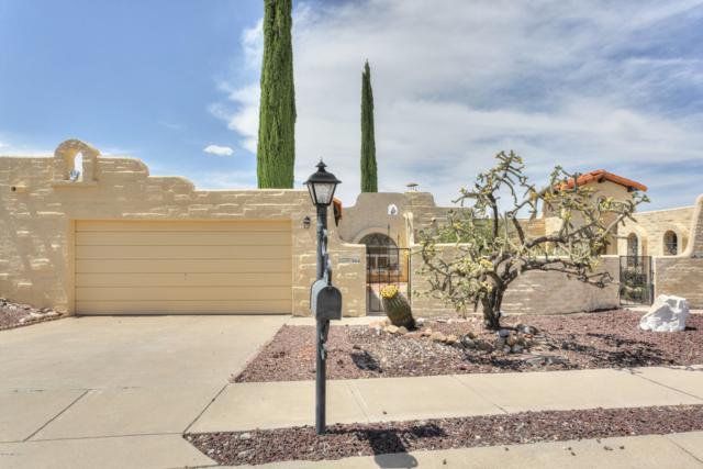 664 W Placita Nueva, Green Valley, AZ 85614 (#21915672) :: Long Realty - The Vallee Gold Team