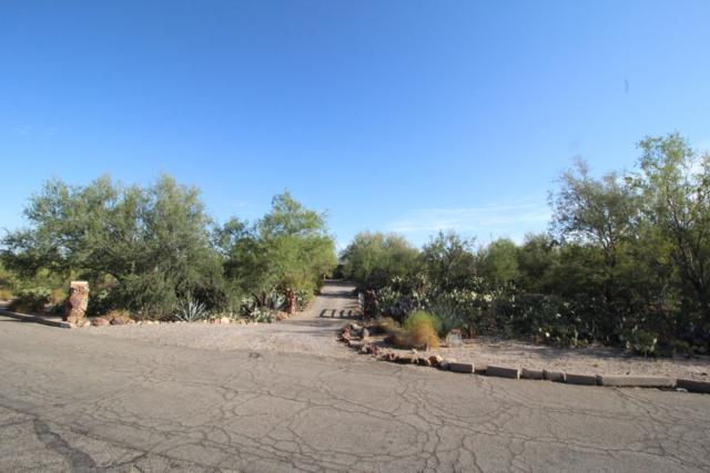 1430 W Calle Concordia, Oro Valley, AZ 85704 (#21916264) :: Tucson Property Executives