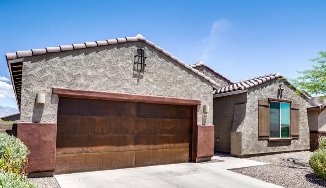11044 N Delphinus Street, Oro Valley, AZ 85742 (#21916574) :: Long Realty - The Vallee Gold Team