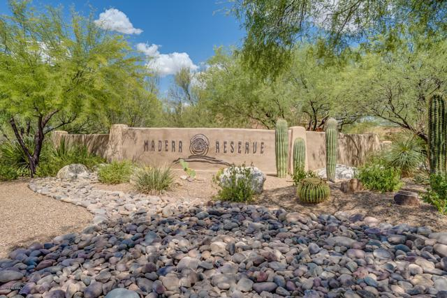 1142 E Cave Canyon Place #148, Green Valley, AZ 85614 (#21917640) :: Long Realty - The Vallee Gold Team