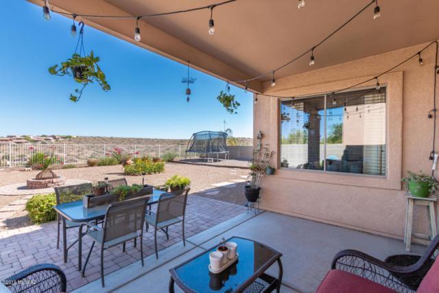 39244 S Mountain Shadow Drive, Tucson, AZ 85739 (#21917755) :: Long Realty Company