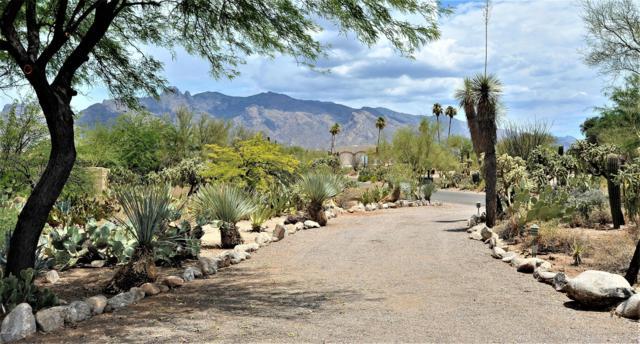 5251 N Via Condesa, Tucson, AZ 85718 (#21918170) :: Long Realty - The Vallee Gold Team