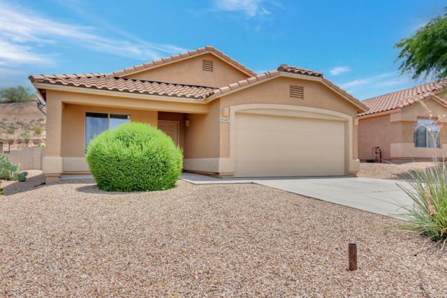 39497 Cinch Strap Place, Tucson, AZ 85739 (#21918316) :: Long Realty Company