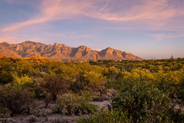 55 W Shimmering Sand Place Lot 492, Oro Valley, AZ 85755 (#21918865) :: Long Realty - The Vallee Gold Team