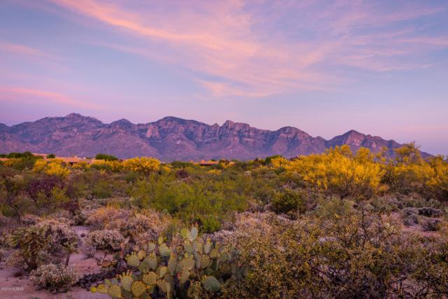 95 W Shimmering Sand Place Lot 491, Oro Valley, AZ 85755 (#21918867) :: Long Realty Company