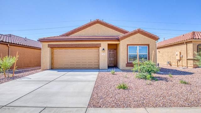 9131 W Blue Roan Lane, Marana, AZ 85653 (#21919360) :: Long Realty - The Vallee Gold Team
