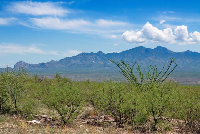 TBD Aliso Springs Rd B D E, Tubac, AZ 85646 (#21921204) :: Long Realty Company