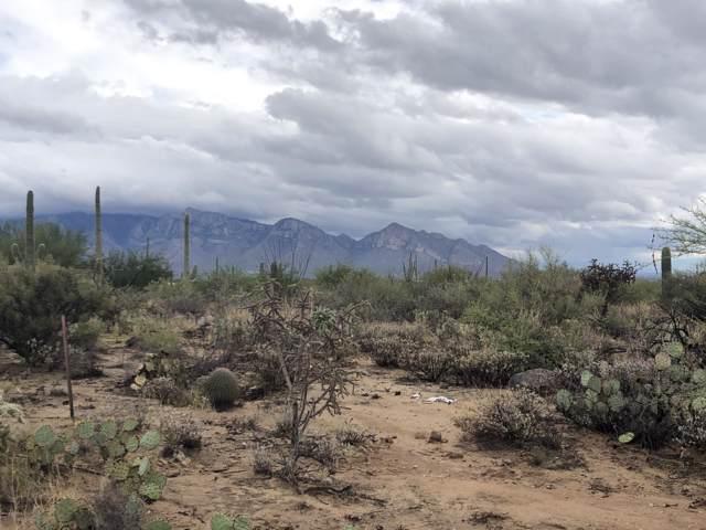 1906 W Mountain Mirage Place #161, Oro Valley, AZ 85755 (#21925388) :: The Josh Berkley Team