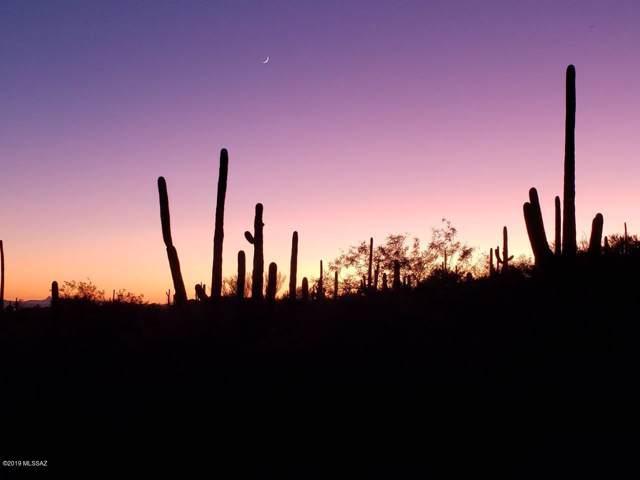 10245 E Sabino Estates Drive #44, Tucson, AZ 85749 (#21925525) :: Long Realty - The Vallee Gold Team