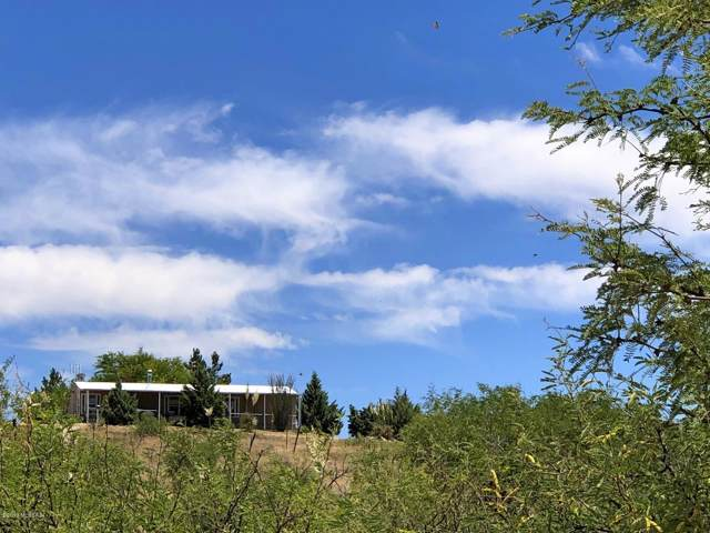 24870 E Boer Goat Place, Benson, AZ 85602 (#21925880) :: Long Realty - The Vallee Gold Team