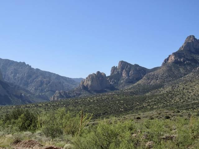10.83 Acre S Limestone Mountain, Portal, AZ 85632 (#21927358) :: Keller Williams