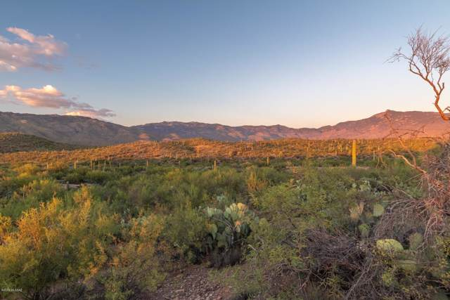 15435 E Tumbling L Ranch Place #123, Vail, AZ 85641 (#21927375) :: Keller Williams