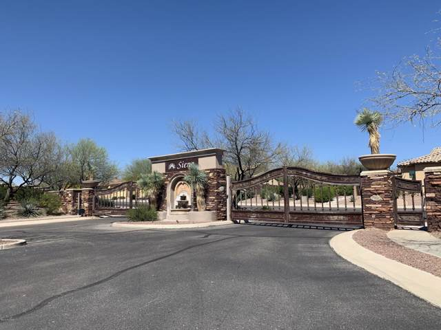 1218 W Casentino Pass, Oro Valley, AZ 85755 (#21927549) :: Long Realty - The Vallee Gold Team