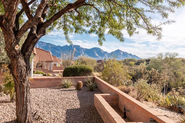 2132 E Ruellia Drive, Oro Valley, AZ 85755 (#21929073) :: Long Realty Company