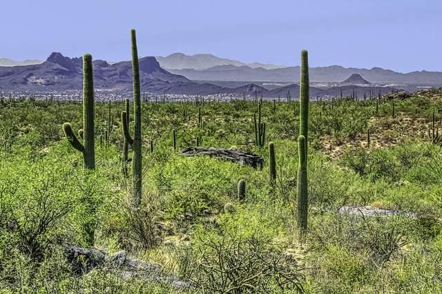 13670 N Hidden Rock Place Lot 245, Marana, AZ 85658 (#21929718) :: Luxury Group - Realty Executives Arizona Properties