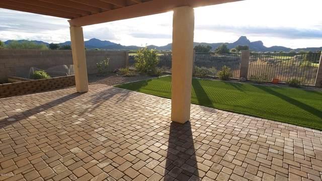 8431 N Douglas Fir Drive, Tucson, AZ 85743 (#21930968) :: Gateway Partners | Realty Executives Tucson Elite